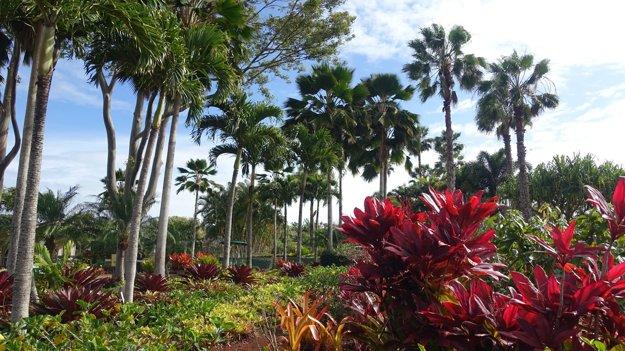 Park v Dole plantation.