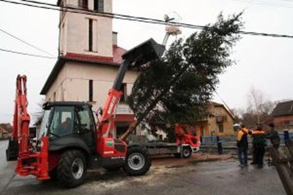 Stromček v Priekope už stojí.