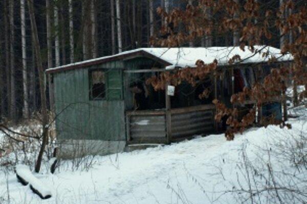 Lesopark pod Bôrom. Tu sa bezdomovci zdržiavali v minulú zimu.