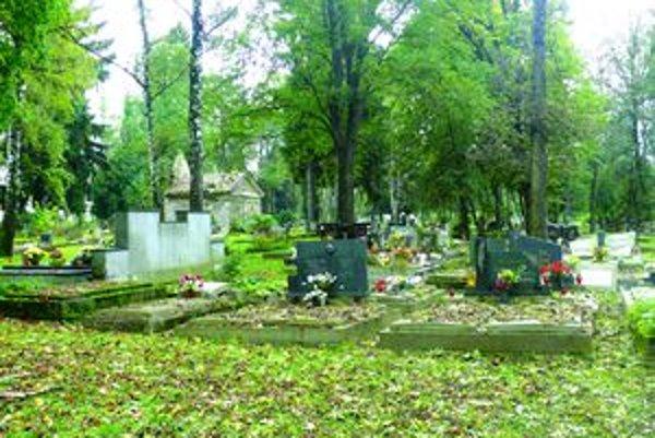 Na Jahodníckom cintoríne v Martine by sa malo začať pochovávať v januári.