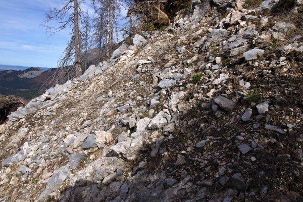 Odokrytý kamenistý svah, kde sa les len ťažko obnoví sám.