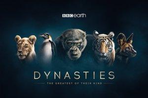 Seriál Dynastie sa bude vysielať aj na Slovensku.