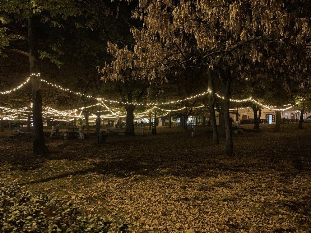 Atmosféra parku, okolo ktorého sú vinárne, je elektrizujúca