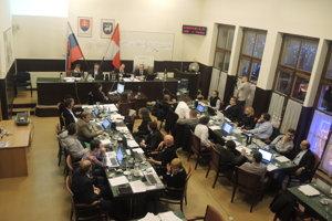 Trenčianske mestské zastupiteľstvo (2015).