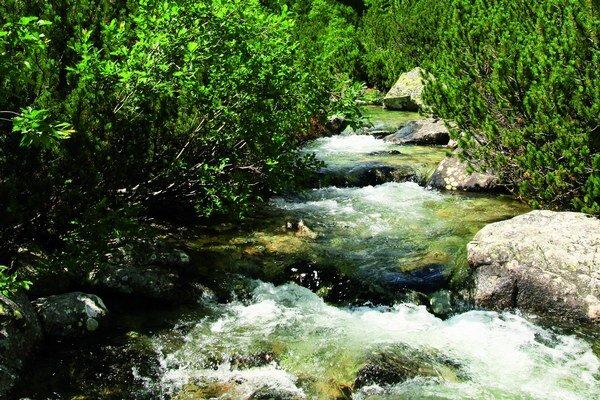 Horské rieky ovplyvňujú život v nížinách.