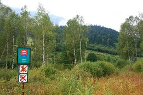 Ochranári žiadajú, aby rašelinisko pri Rojkove ostalo nedotknuté.