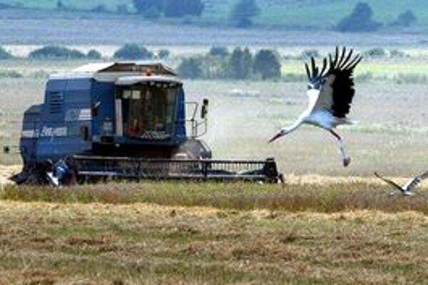 Poľnohospodári sa vyjadrujú, že súčasná politika únie nie je voči všetkým krajinám rovnako spravodlivá.