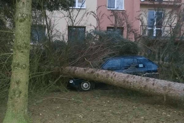 V Bardejove padali stromy aj na autá.