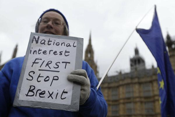 Demonštrant proti Brexitu pred britským parlamentom.