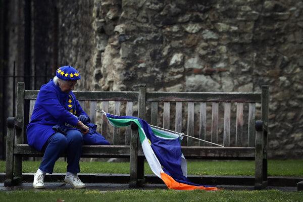 Britka demonštruje za zotrvanie Británie v EÚ pred budovou parlamentu.