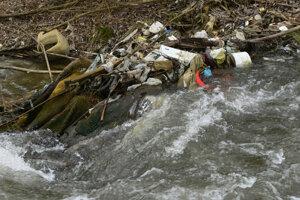 Rieku čistia každoročne.