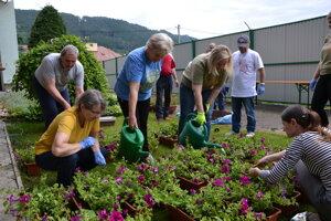 Dobrovoľníci v zariadení pre seniorov HARMONIA v Žiline sa venovali aj kvetom.