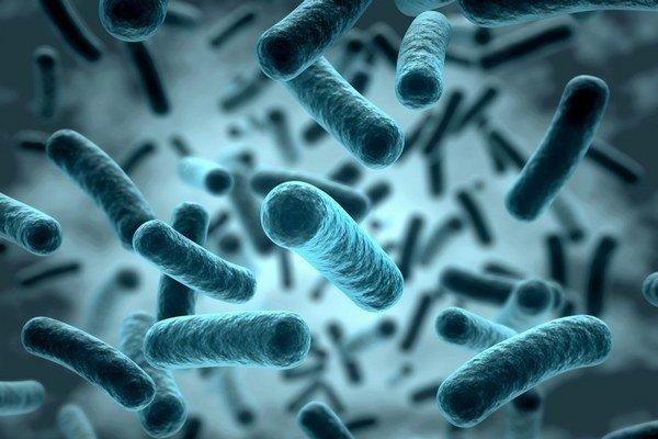Niektoré baktérie nám pomáhajú, iné sa naučili brániť aj proti antibiotikám.