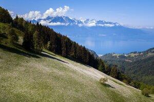 Ľadovce v Alpách by v najbližších desaťročiach mohli podľa talianskeho glaciológa zmiznúť.