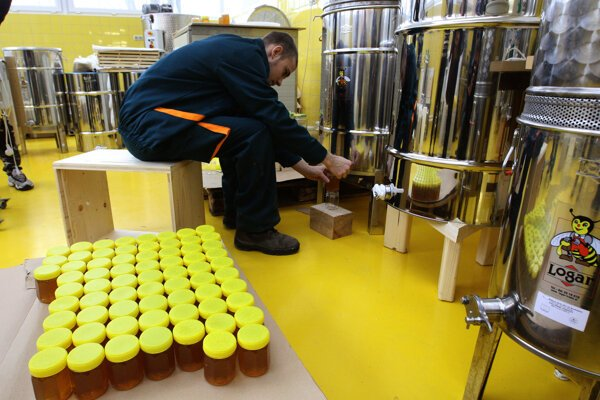 Pri vytáčaní medu.