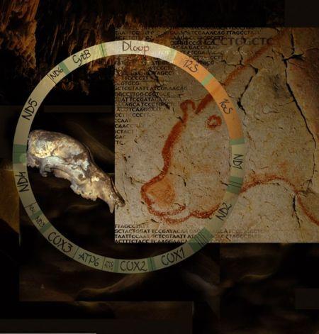 jaskynny_medved5.jpg
