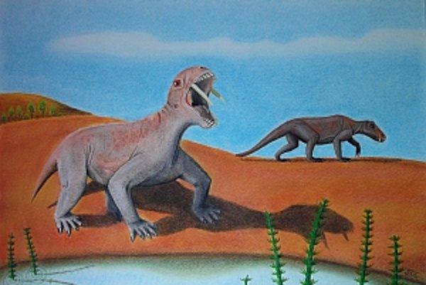 Umelecká predstava tiarajudensa, ako vycerením šabľovitých špiciakov odháňa mäsožravého plaza dinocephaliana.