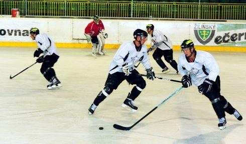 hokejisti3.jpg
