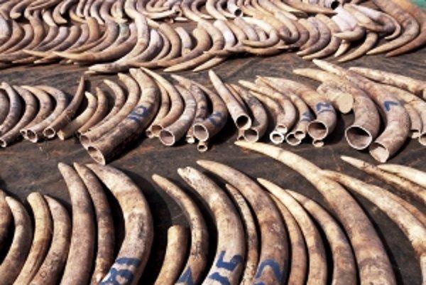 Obchodu so slonovinou sa darí aj na internete.
