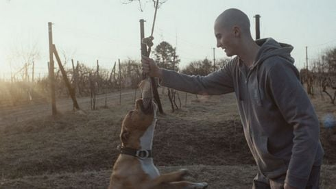 my_dog_killer_film_still_res.jpg