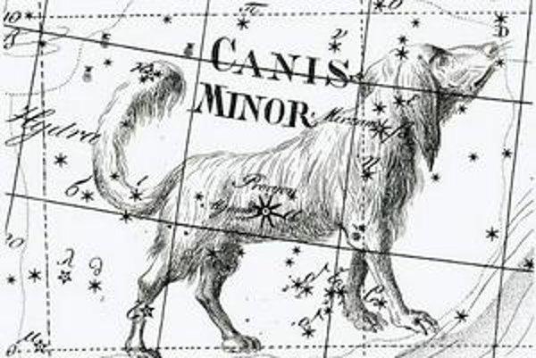 Malý pes z atlasu Johanna Bodeho Uranographia z roku 1801.