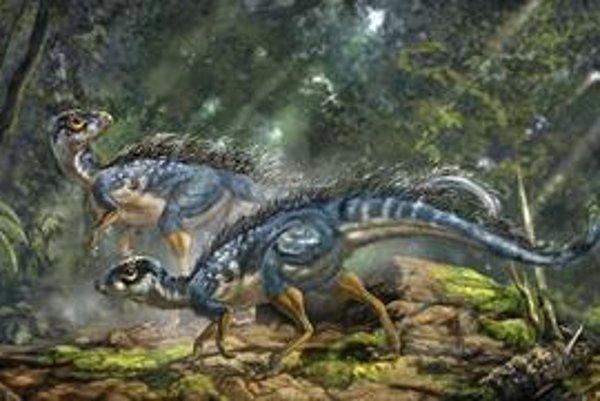 Umelecká vízia dvoch operených dinosaurov Tianyulong confucius.