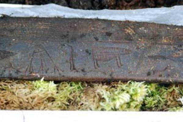 Záber časti vykopávok na čukotskom nálezisku Un'en'en.