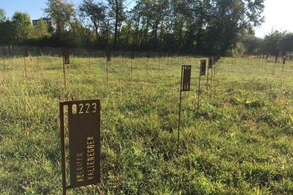 Práce na vojenskom cintoríne budú pokračovať.