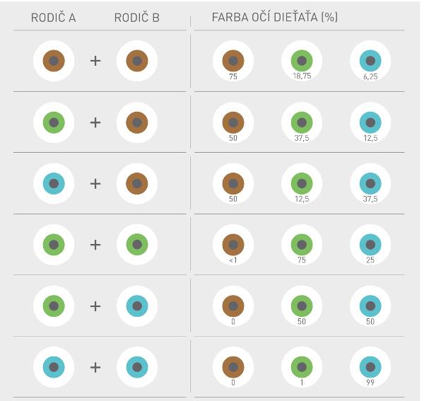 farba-oci-dietata_infografika_r8159.jpg