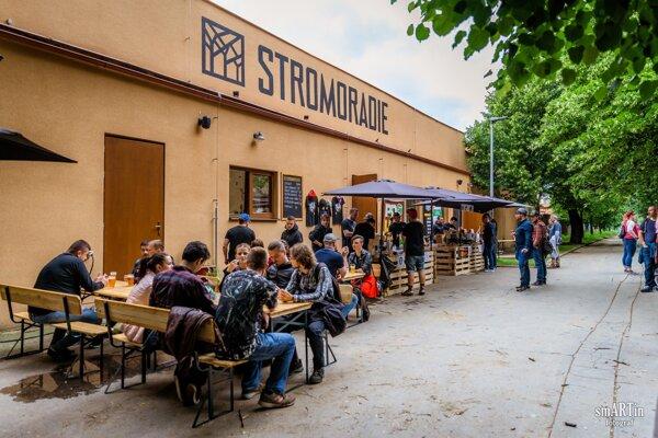 Stromoradie v Prešove.