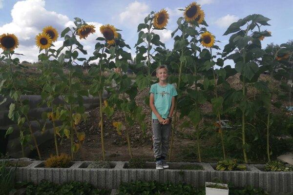 Šimonko Rypák je malý - veľký pestovateľ.