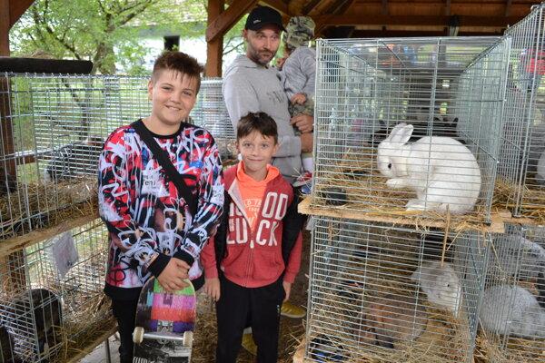 Výstava domácich a exotických zvierat je zážitkom hlavne pre deti.
