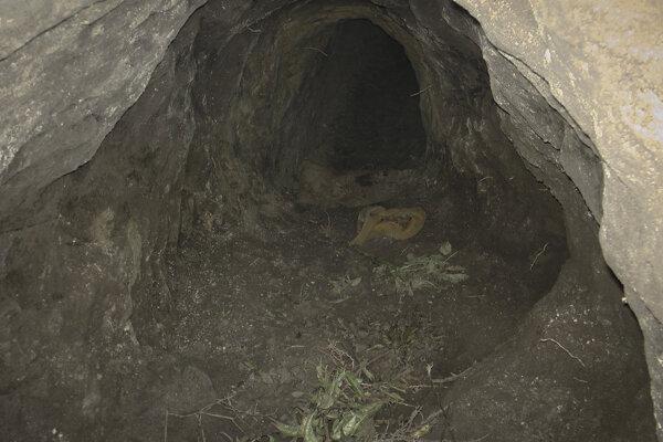 Na nedatovanej snímke, ktorú poskytla maďarská polícia je podzemný tunel v  katastri obce Ásotthalom, ktorý vykopali migranti. Polícia chytila v tuneli 44 migrantov, ktorí sa pokúsili ilegálne prekročiť srbsko-maďarské hranice.