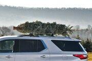 Vianočný stromček prepravujte kmeňom dopredu.