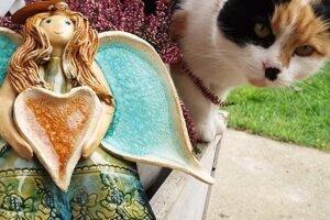 Cica si prišla pozrieť jedno z keramických diel Jany Fábryovej.
