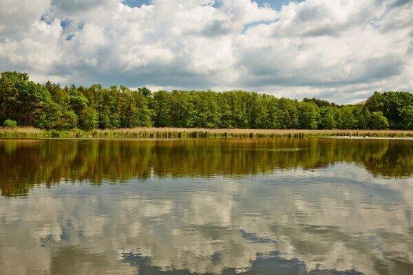 Marhecké rybníky