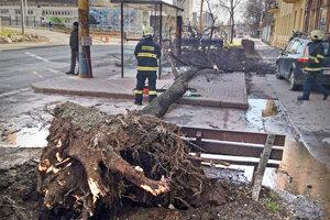 Strom v Košiciach spadol aj na zastávku MHD.
