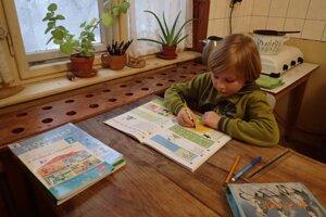 Osemročný Maťko študuje individuálnou domácou formou.