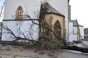 Lipa spadla rovno na vchod do kostola.