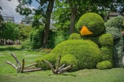 Vrabčiak v botanickej záhrade vo francúzskom meste Nantes. Takéhoto krásavca by chcel vo svojom meste aj primátor Krásna nad Kysucou.