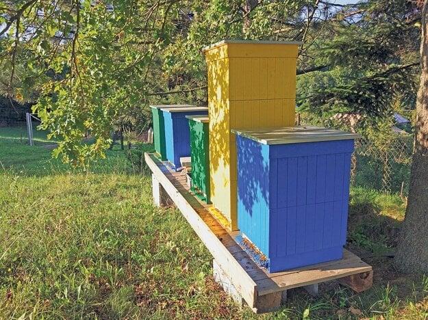 Včielky z týchto krásnych úľov pomáhajú opeľovať čučoriedkovú plantáž Čučky.sk v obci Pitelová.