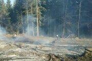 Profesionálnym hasičom pomáhali  dobrovoľníci z Nesluše a Ochodnice.