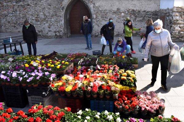 Na Dominikánskom námestí lákala najviac ponuka kvetov.
