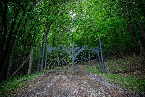 Vstup do panstva Kvietikovcov je zamknutý. Turisti sa do ich zvernice dostanú cez dieru v plote.