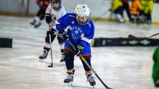 Hokejový zväz nakúpil deťom najdrahšie hokejky, všetky lacnejšie vyradil