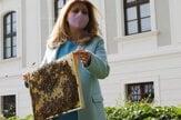 Čaputová dala do Prezidentskej záhrady včelie úle