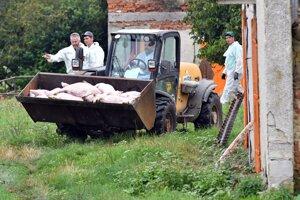 Všetky zvieratá na farme usmrtili.