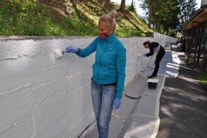 Maľovanie múru.