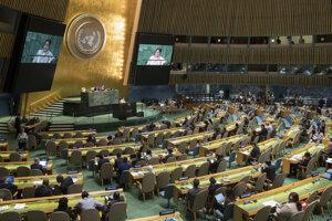 Zmluvu o zákaze jadrových zbraní prijalo Valné zhromaždenie OSN ešte v júli 2017.