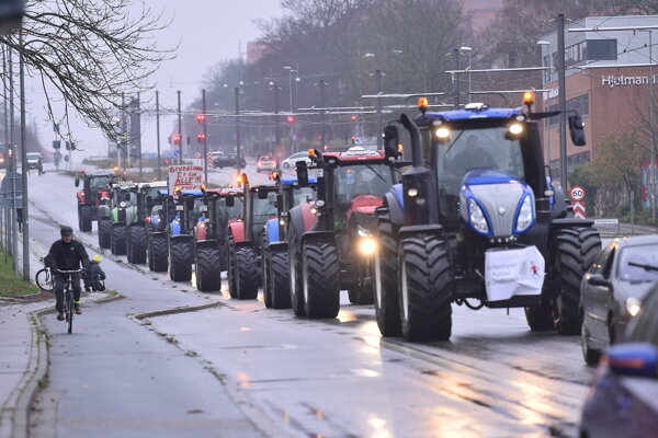 Protest farmárov v Dánsku proti likvidácii chovu noriek.